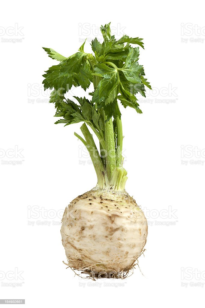 Image of growing celery on white background stock photo