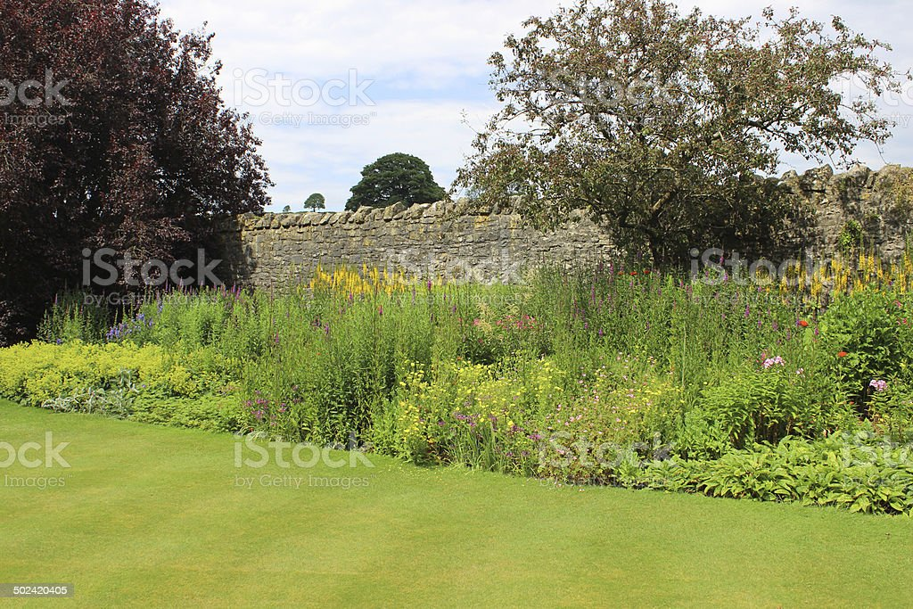 Image of herbaceous border in garden with summer flowers / plants stock photo