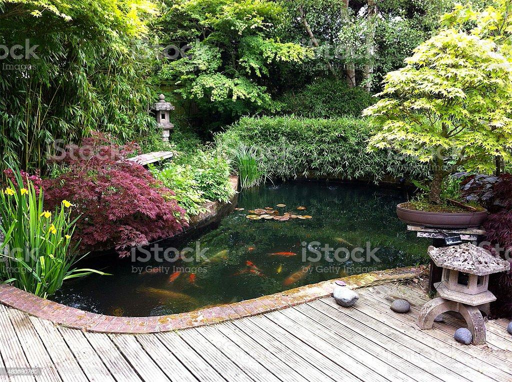 Bild Der Japanische Garten Mit Koiteich Bambus Ahornbäumen Bonsai ...