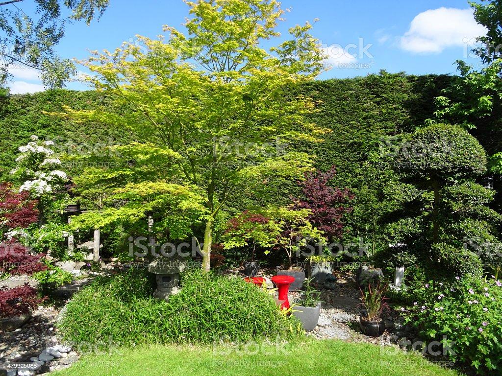 Japan Garten Selbst Gestalten