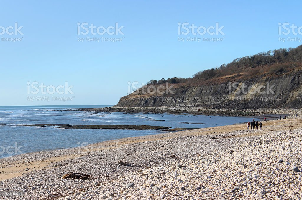 Image of limestone fossil cliffs on Monmouth Beach, Lyme Regis stock photo