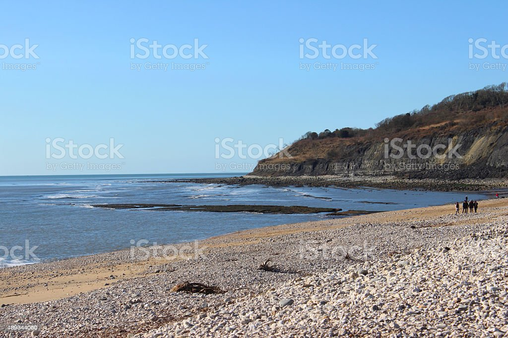 Image of Monmouth Beach and crumbling-cliffs at Lyme Regis, England stock photo