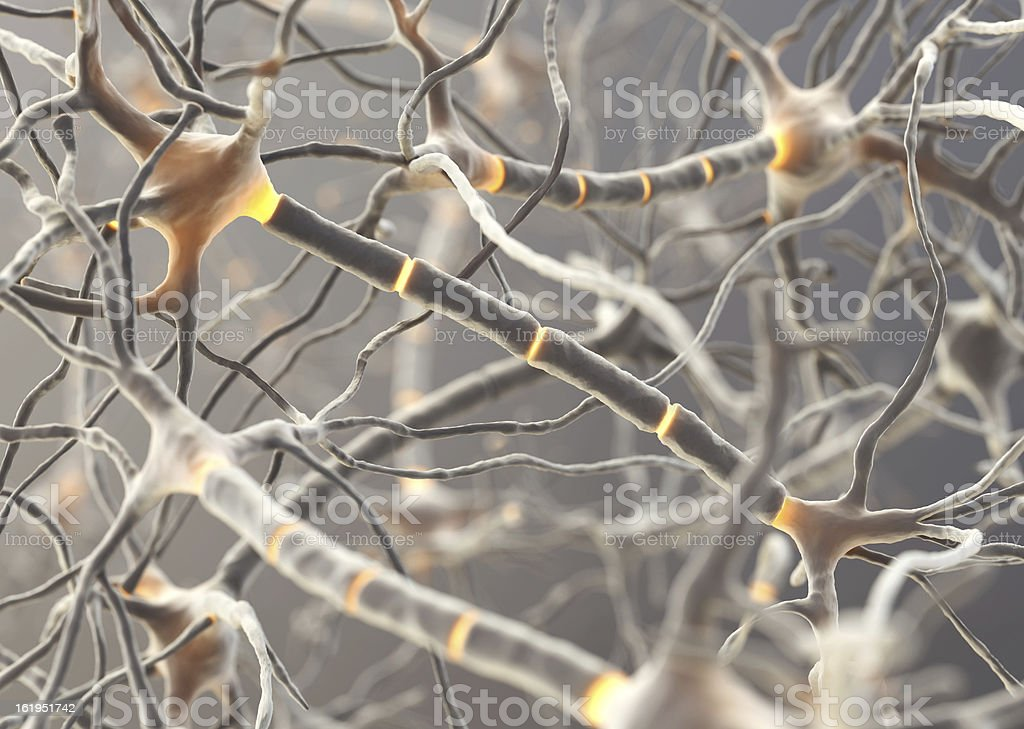 Image of multiple neurons functioning inside someone stock photo