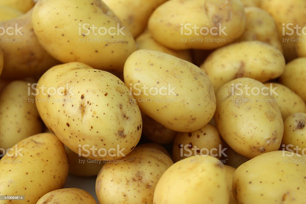 Image of new potatoes in pile, washed and scrubbed Belana stock photo