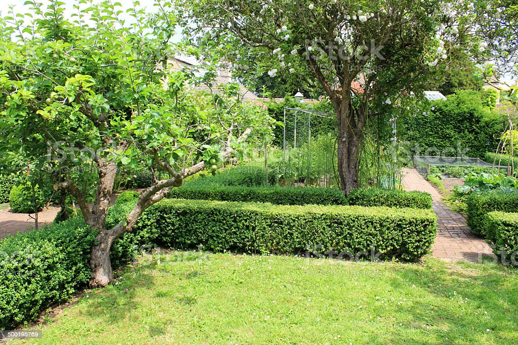 Photo showing a small orchard with apple trees, positioned alongside...