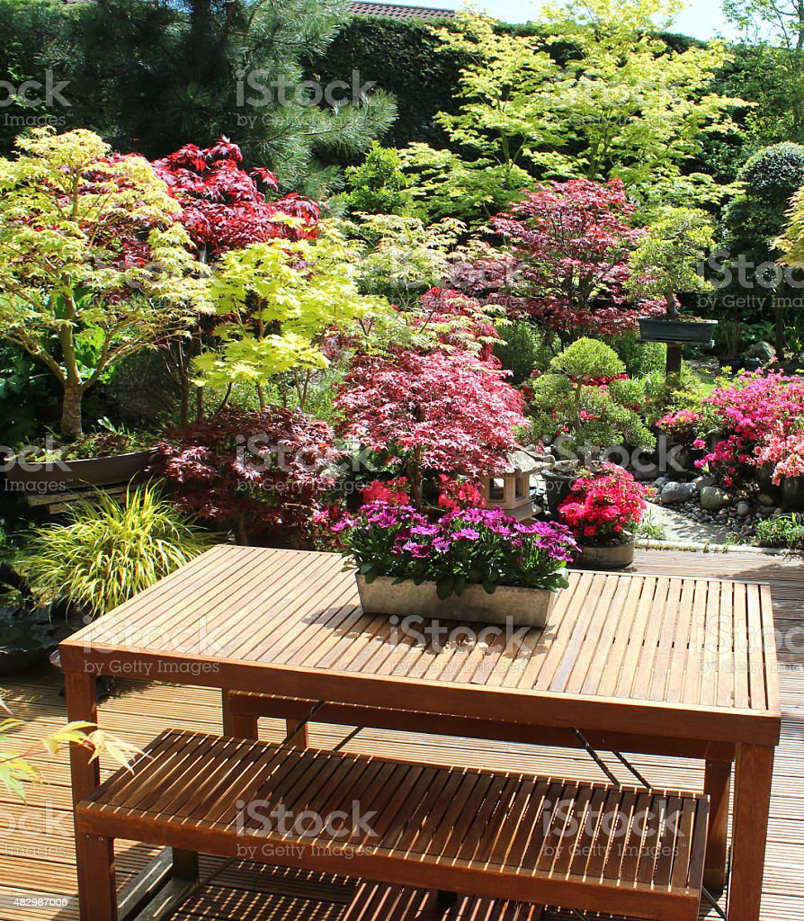 Image of oriental garden, Japanese maples, wooden furniture,  table / benches stock photo