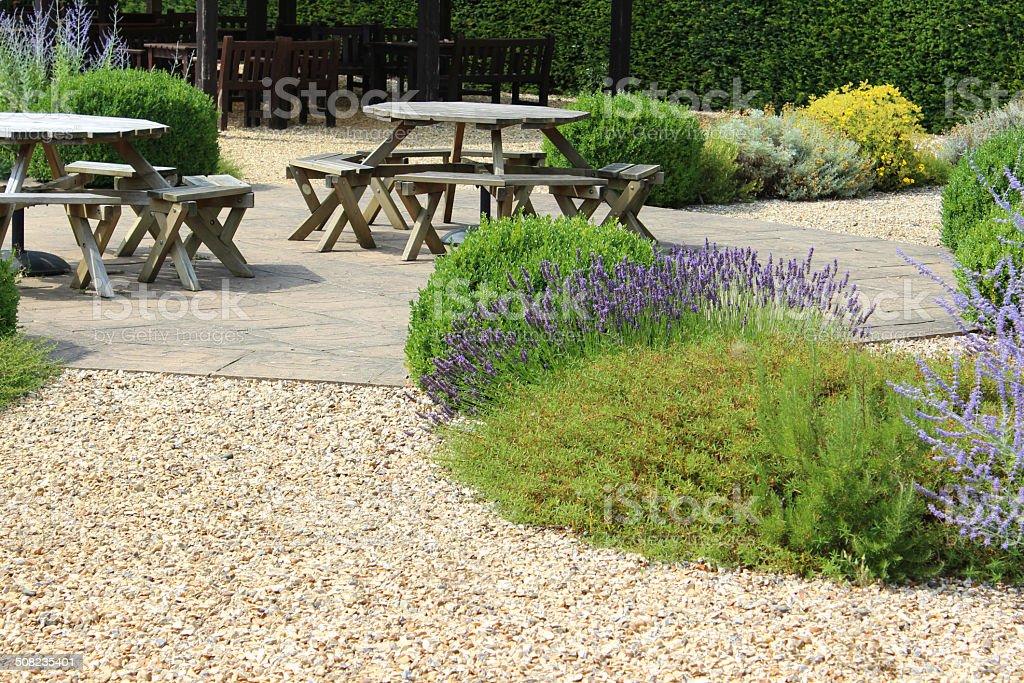 Image of ornamental gravel garden / screen garden, summer flowers, Perovskia royalty-free stock photo