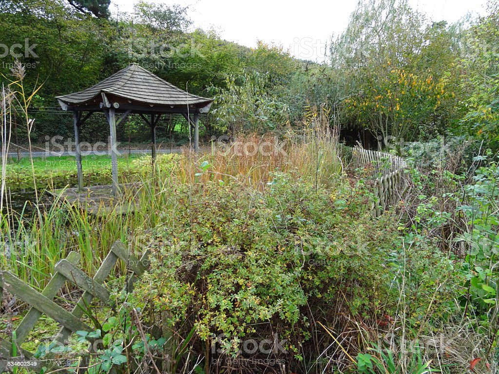 Image of overgrown garden pond / trellis fence, oriental wooden pavilion stock photo