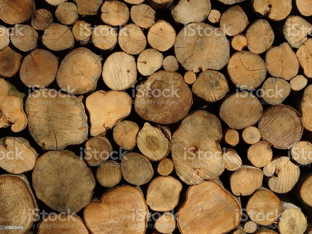 Image of seasoning firewood, wet logs drying out in stack stock photo