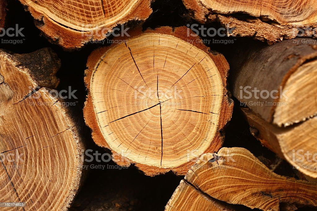 Image of split logs stacked on top of each other stock photo