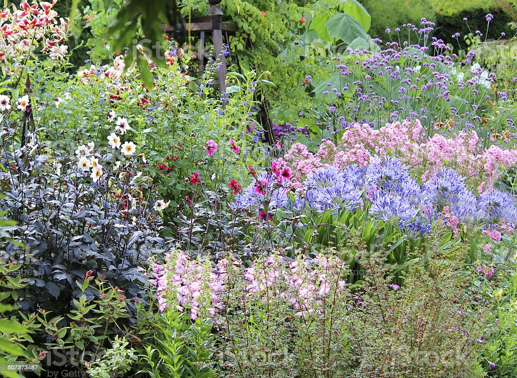 Image of summer flowers in herbaceous garden border, bright colours stock photo