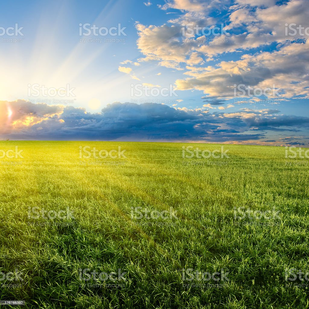Image of sun setting over a grassy field with clouds royalty-free stock photo