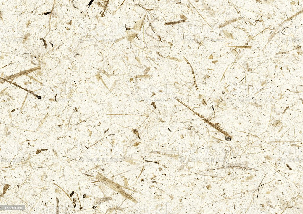 image of textured art paper with twigs stock photo