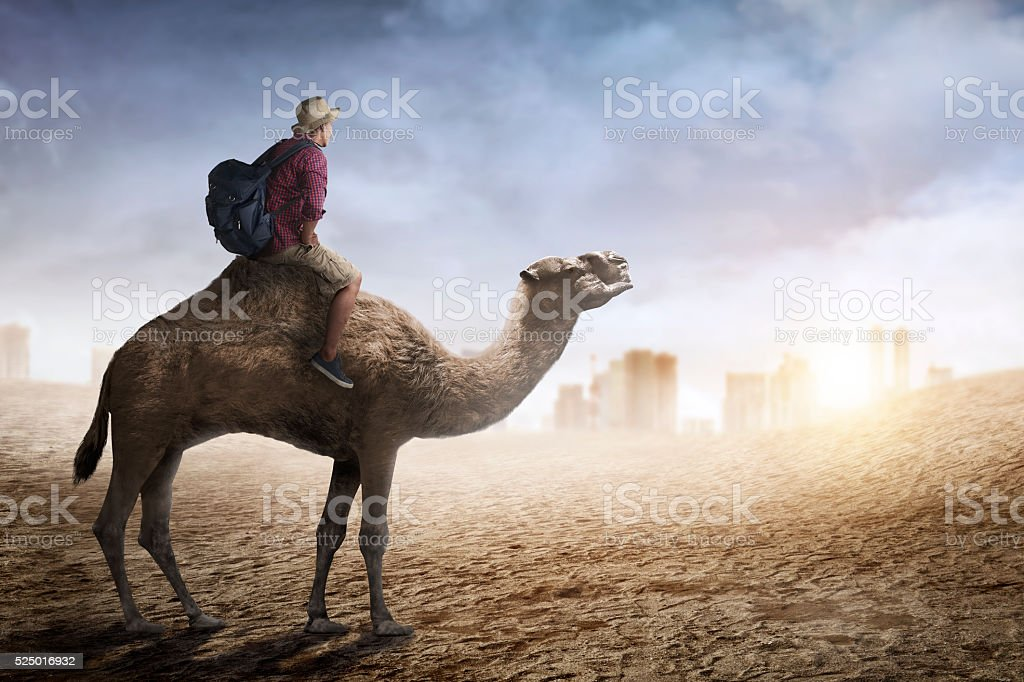 Image of traveler riding camel stock photo