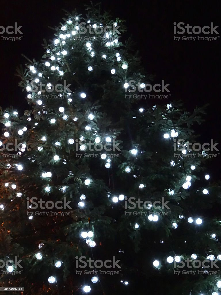 Image of white lightbulbs / fairylights on large outdoor Christmas tree stock photo