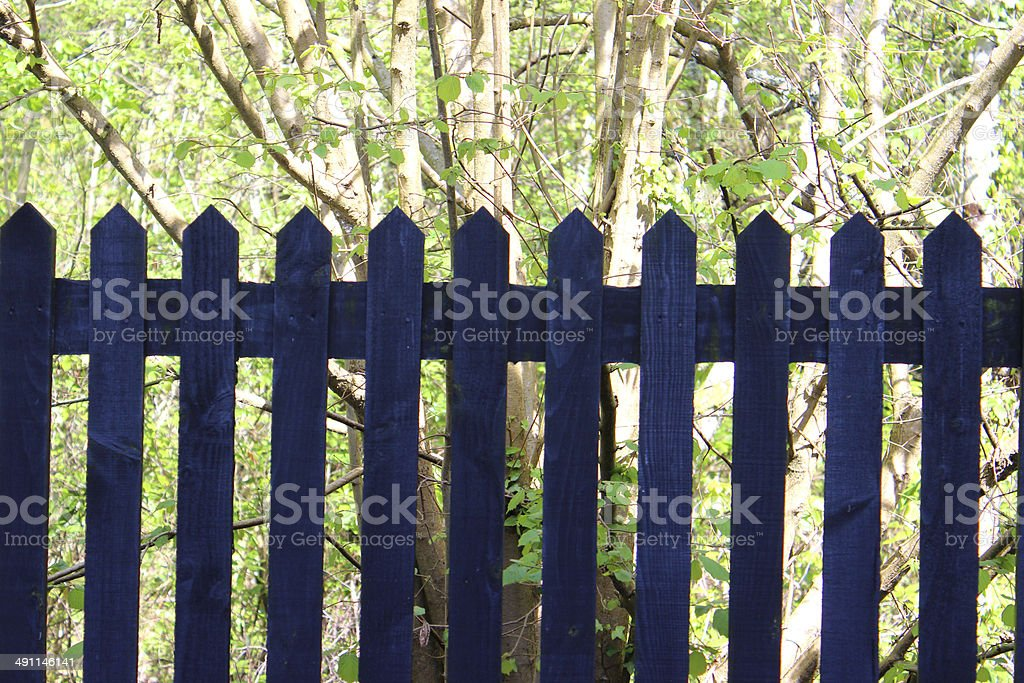 Image of wooden picket fence / fencing in garden, painted blue stock photo