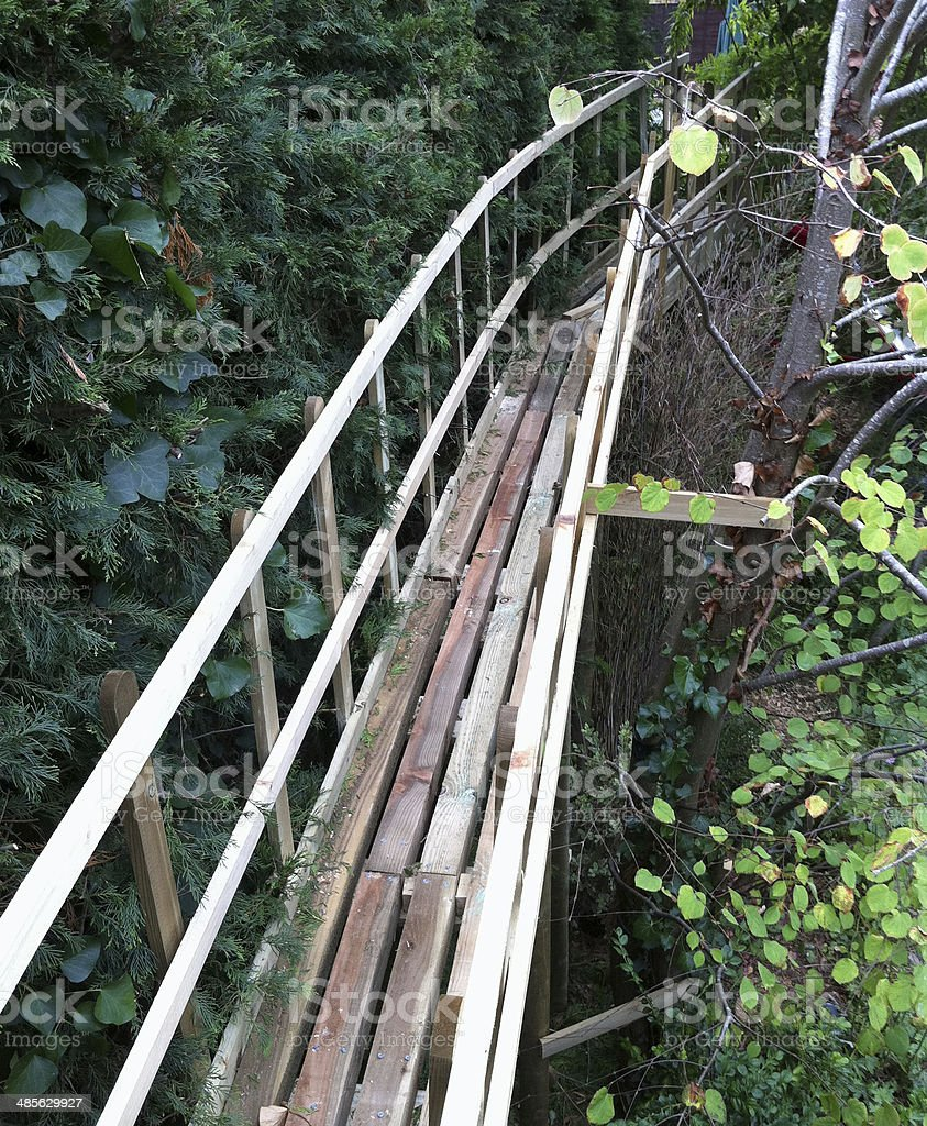 Image of wooden tree top walkway / treehouse stock photo