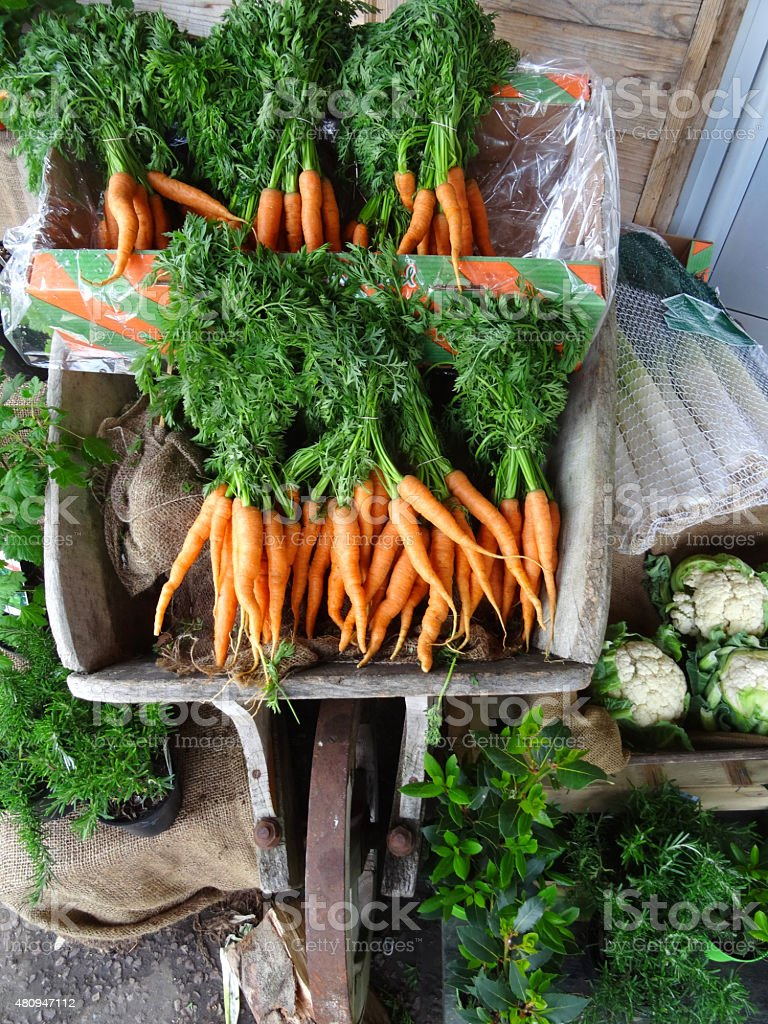 Image of wooden wheelbarrow with bunches of carrots / carrot greens stock photo