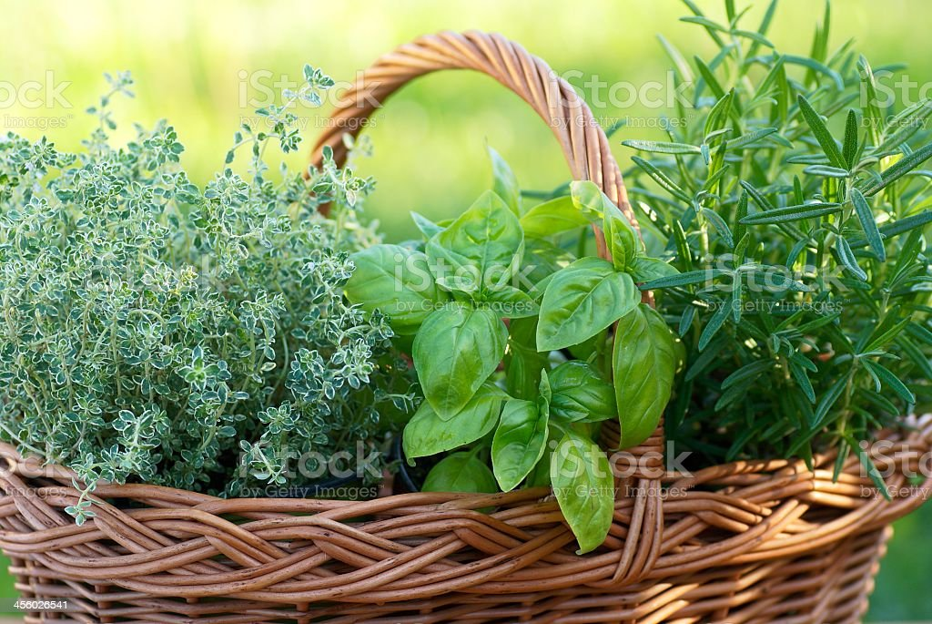 Image of woven basket with fresh herbs stock photo