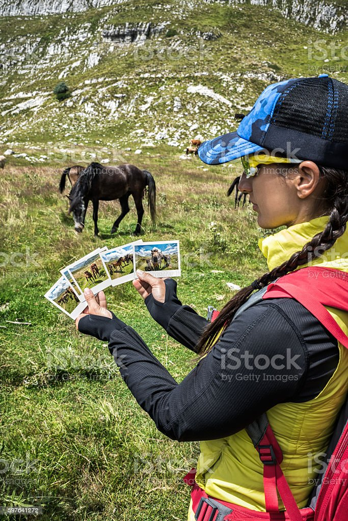Images of mountain horses stock photo