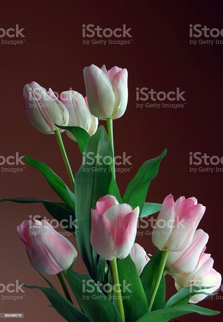 Imitation Flowers for Decoration royalty-free stock photo