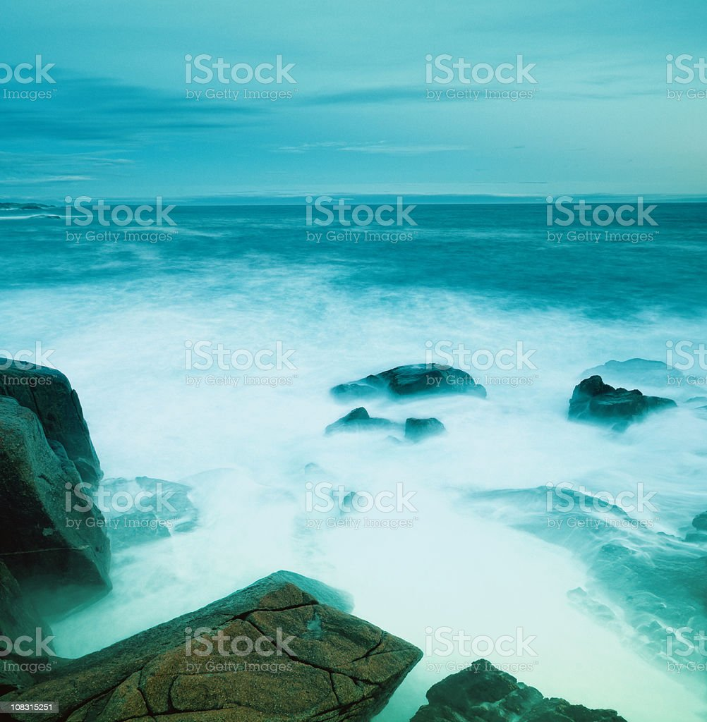 Immersed royalty-free stock photo