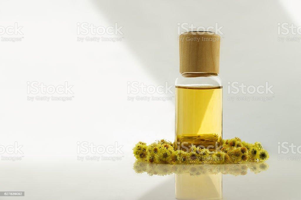 Immortelle essential oil stock photo