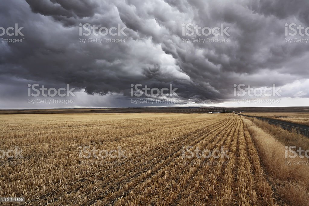 Impending storm in a field in Montana, USA stock photo