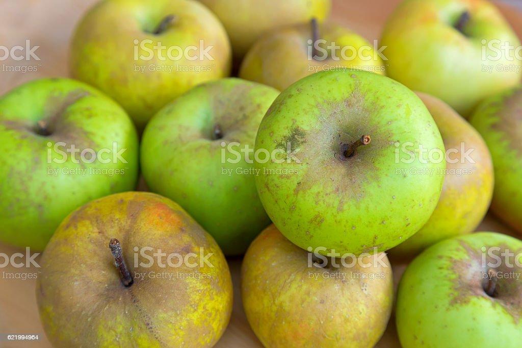 Imperfect looking organic Belle de Boskoop apples, no GMO method stock photo
