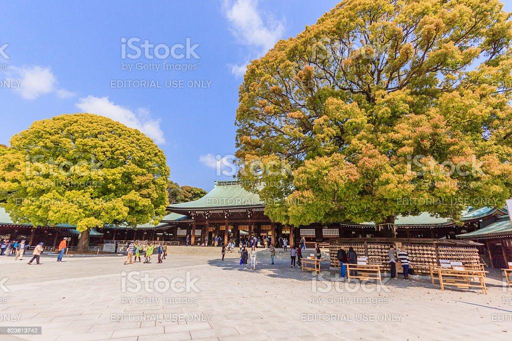 Imperial Meiji Shrine in Shibuya stock photo