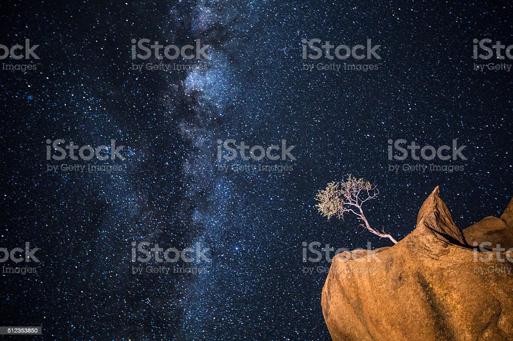 Impossibly growing tree shilloueted under the milky way. stock photo