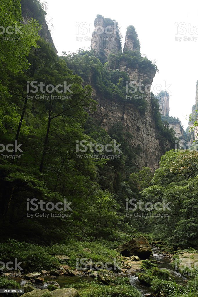 Impressive mountain needles in Zhangjiajie national park stock photo