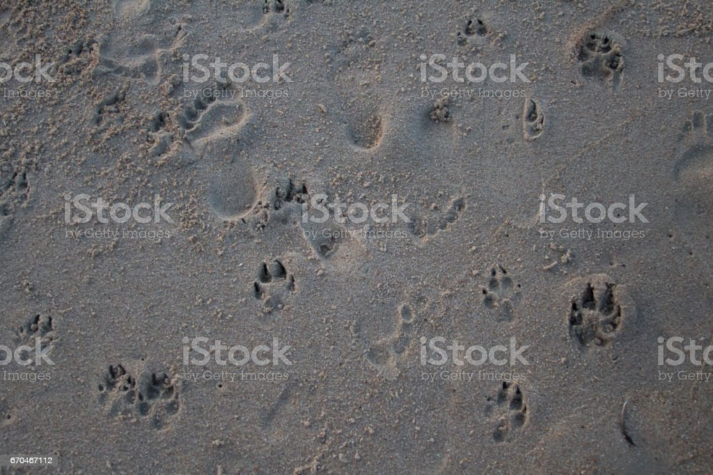 imprint of the day stock photo