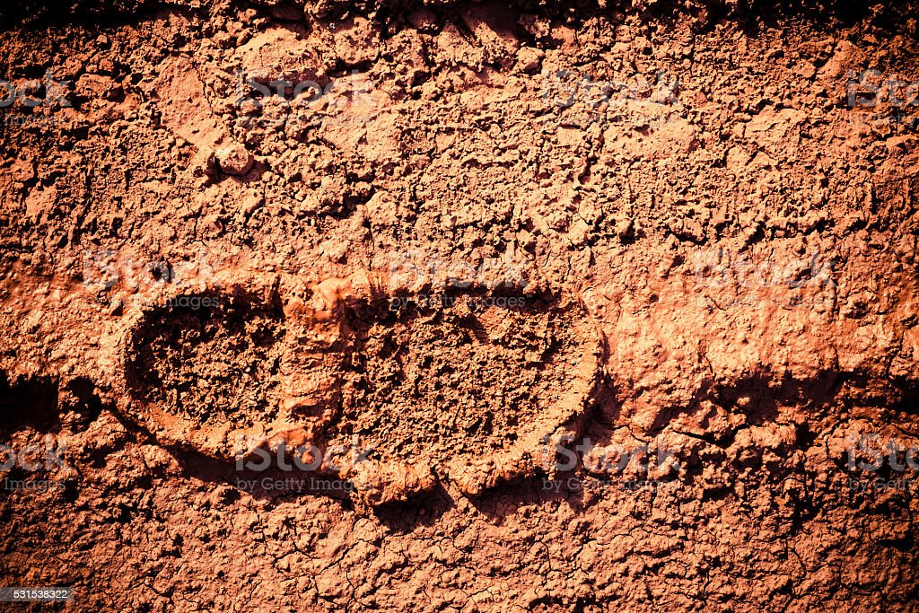 Imprint of the shoes on mud stock photo