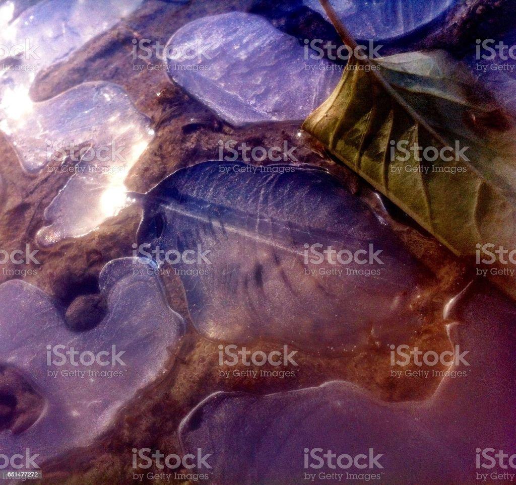 Imprinted legacy stock photo
