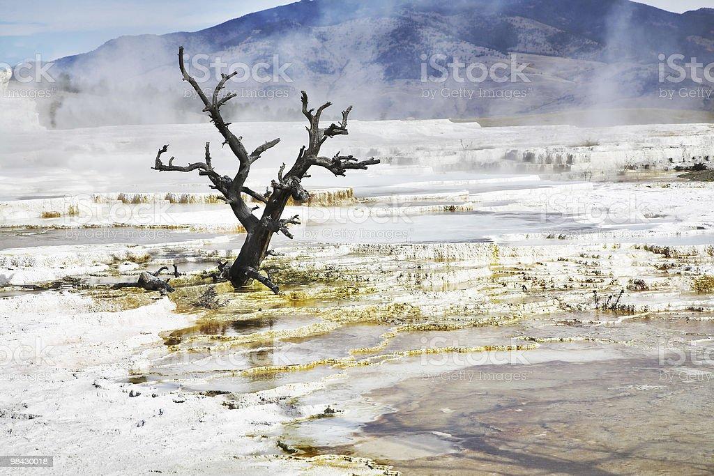 Improbably fantastic landscape royalty-free stock photo