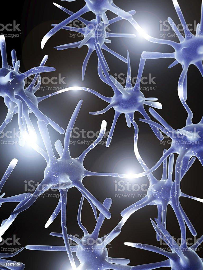 Impulses of neurons royalty-free stock photo