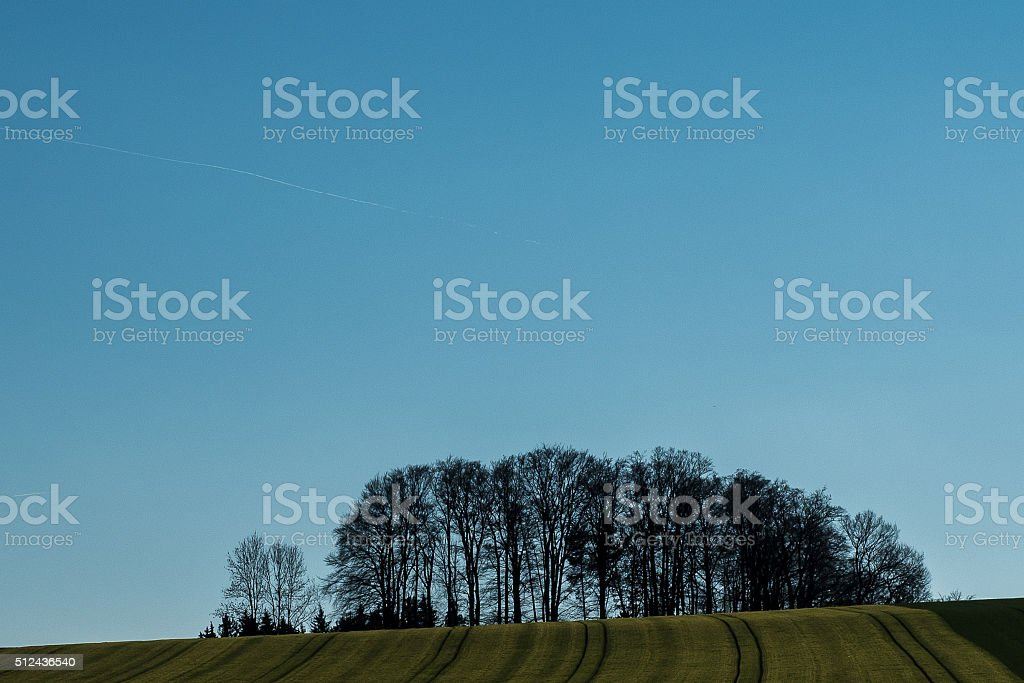In a row stock photo