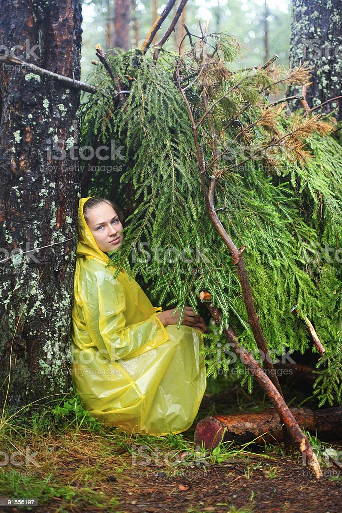 In a shelter of branches stock photo