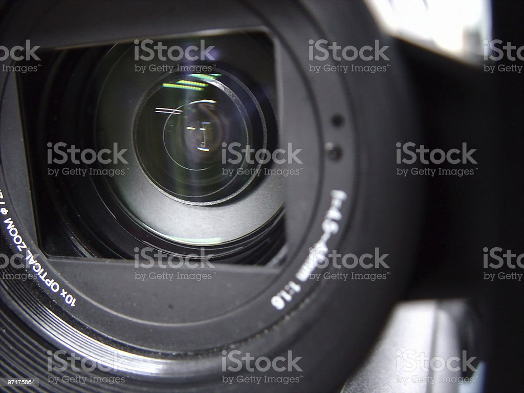 In Focus (3CCD Camera) royalty-free stock photo