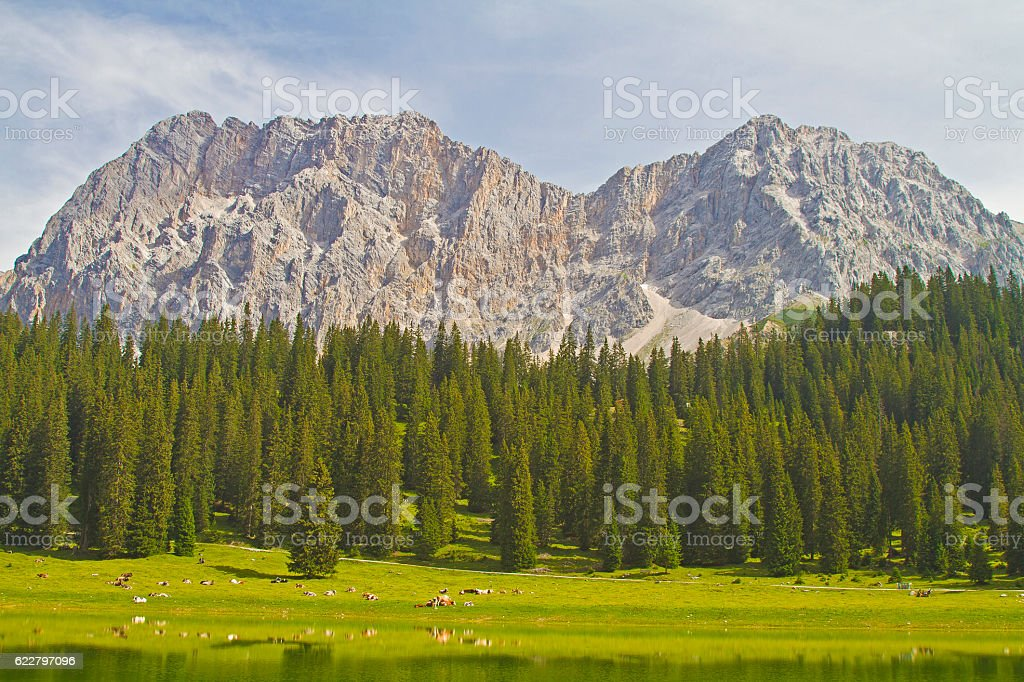 In Gais valley in Tyrol stock photo
