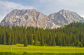In Gais valley in Tyrol