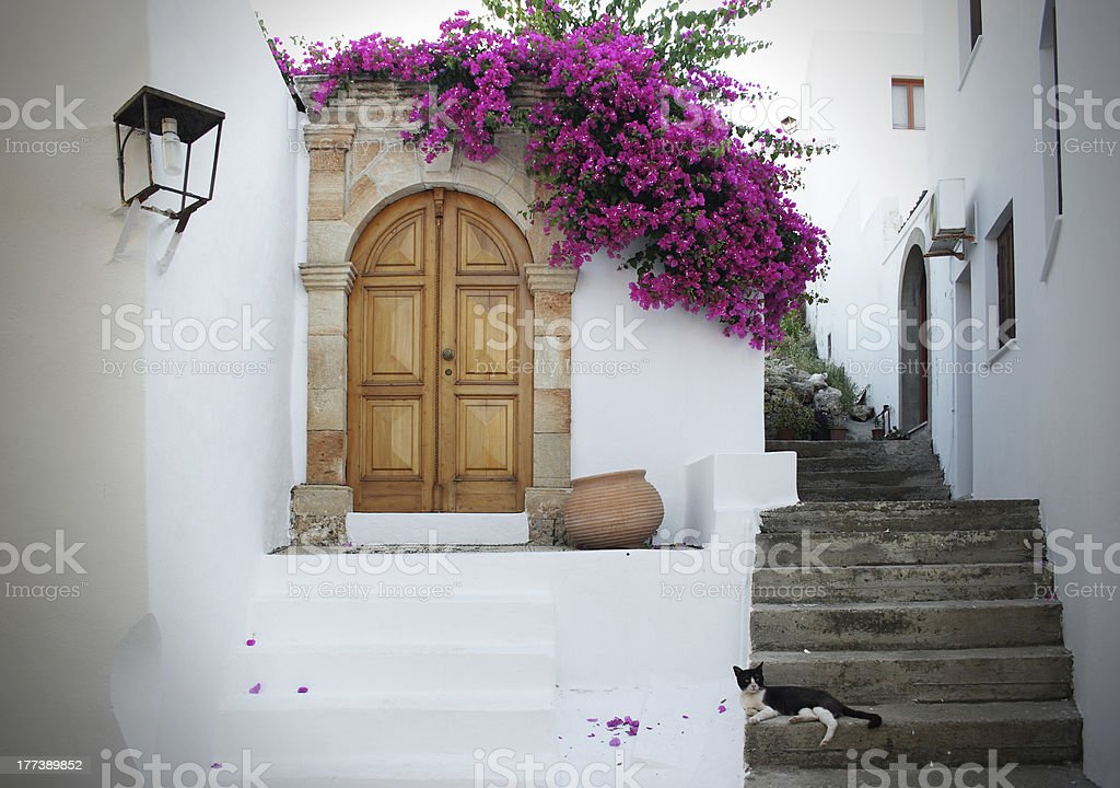 In Greece: white walls, fuchsia flowers, stairs and cat relaxing stock photo