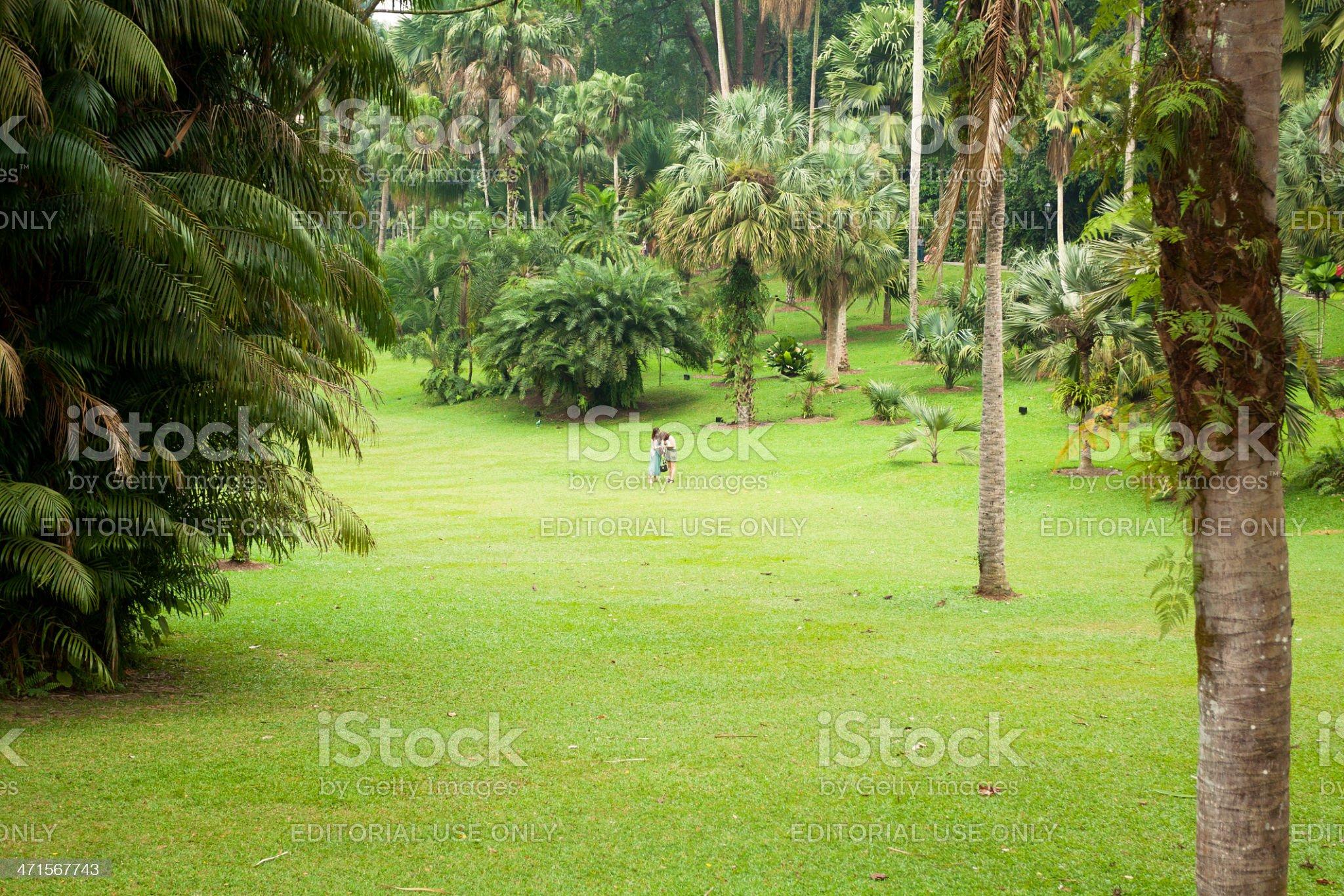 In greenery of Botanic Garden royalty-free stock photo