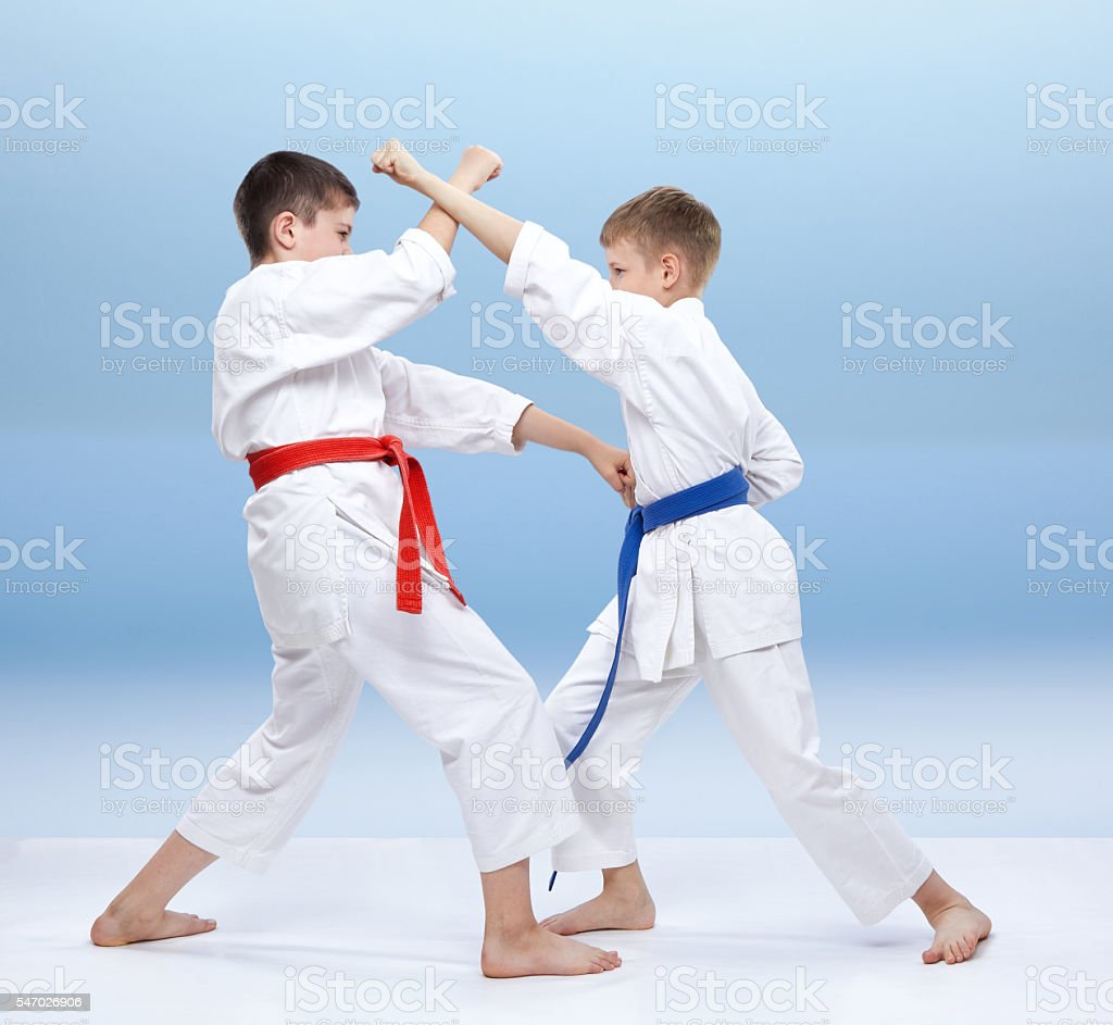 In karategi the boys are training karate punches and blocks stock photo