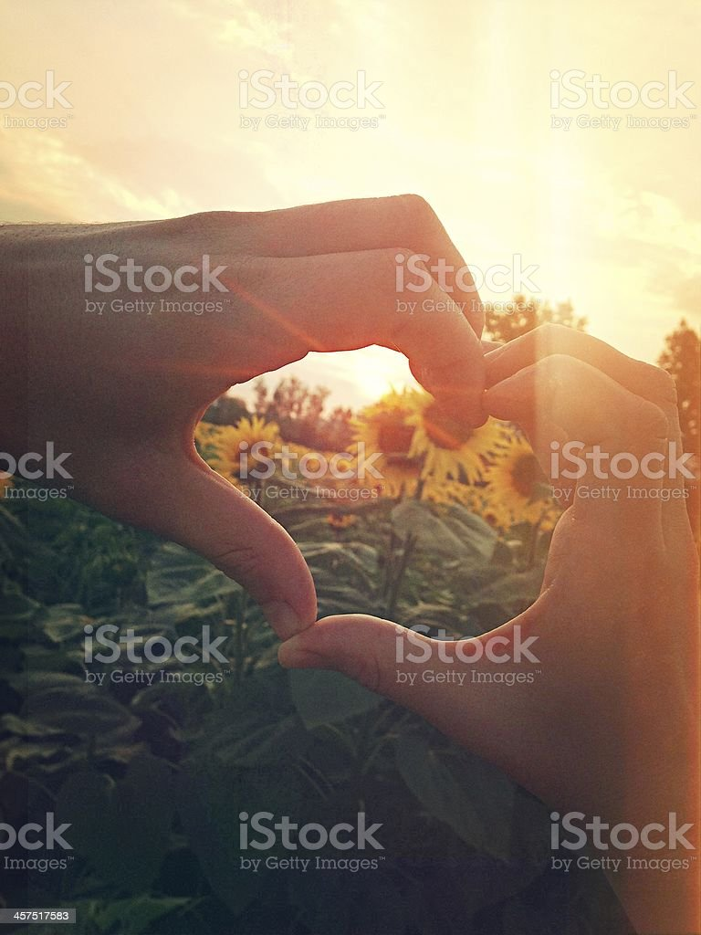 In love with nature stock photo