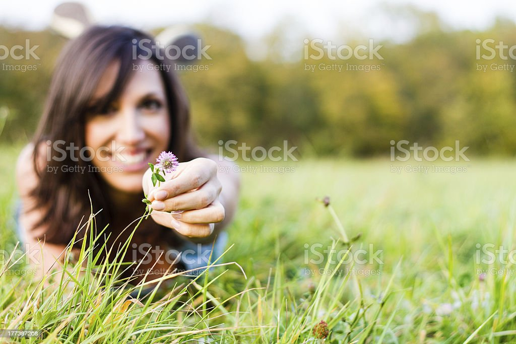 in Meadow stock photo