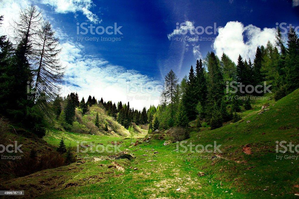 in montagna stock photo