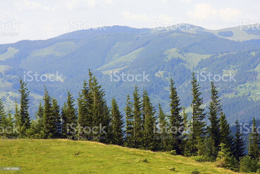 In mountains stock photo
