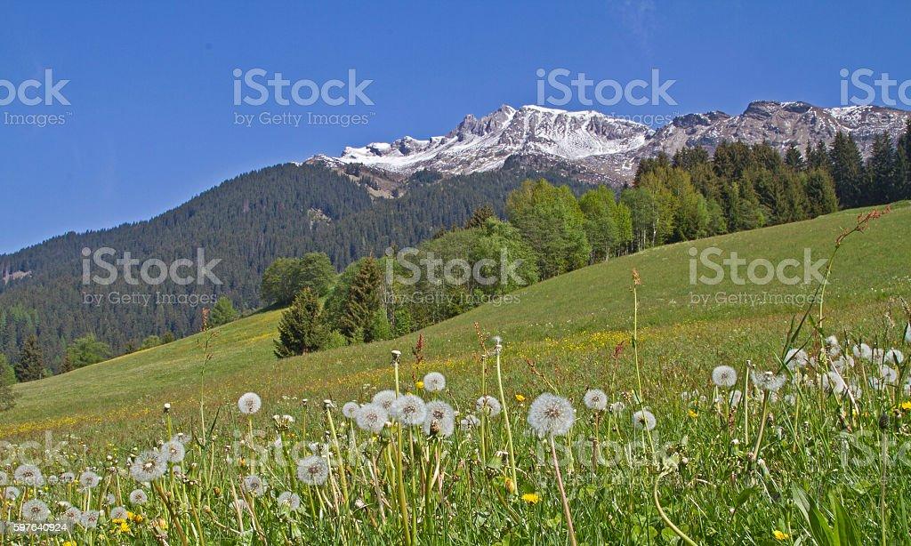 In Ridnaun valley stock photo